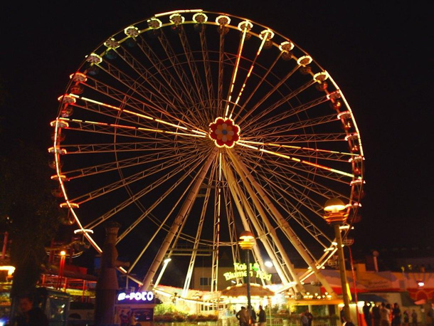 Flower Wheel at night in Prater, Vienna