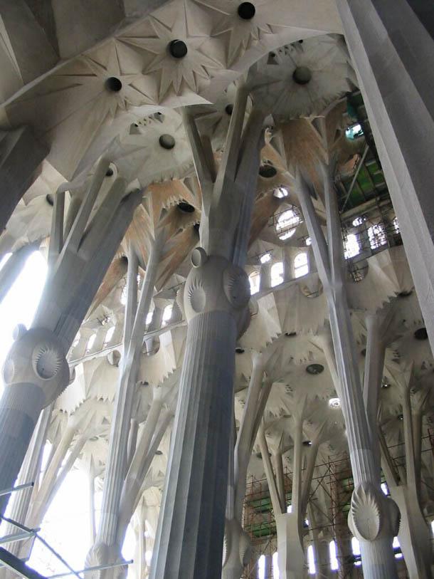 Sagrada Familia Cathedral Ceiling, Barcelona