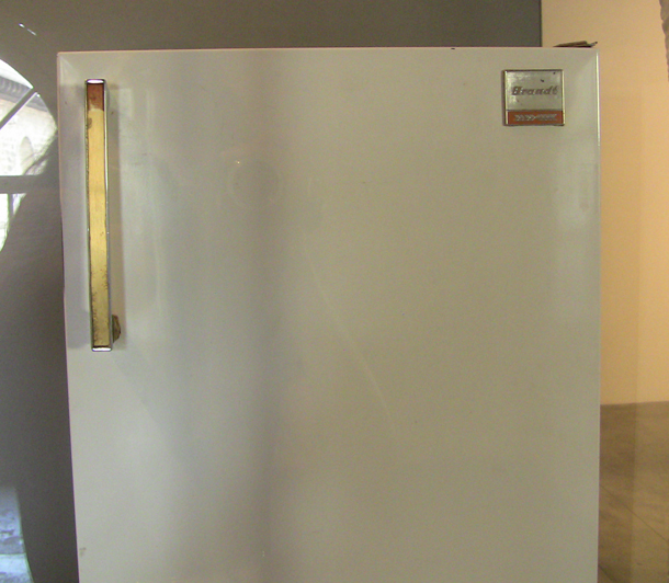 First Models of Fridges in Modern Times, CAPC - Museum of Contemporary Art, Bordeaux