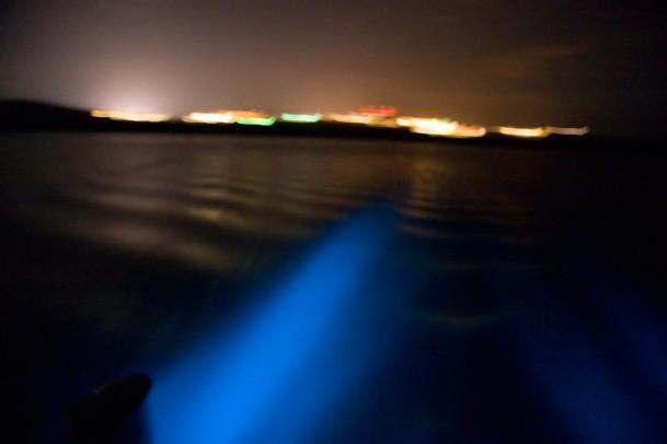 Bioluminescent Mosquito Bay