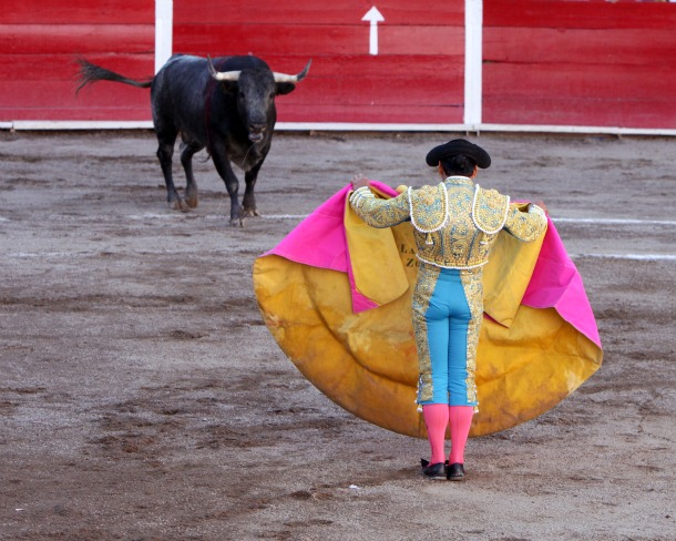 Bullfights Forbidden in Catalonia - Source Wikimedia.org